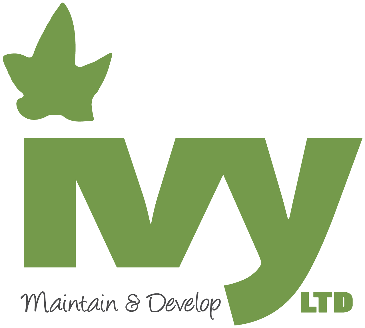 Ivy Maintain